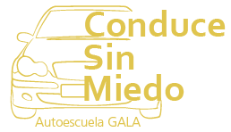 Conduce sin miedo - Amaxofobia - Madrid